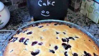 Easy Blueberry Cake