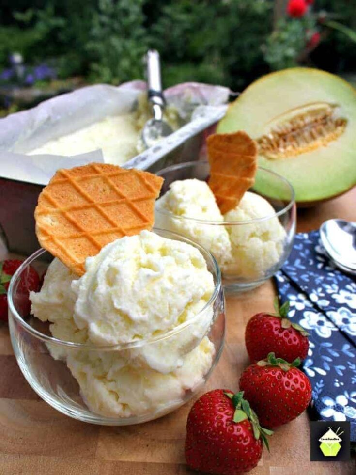 Easy Melon Ice Cream4