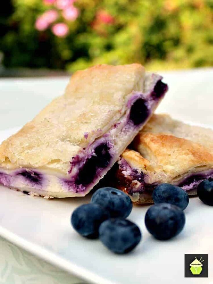 Blueberry Crescent Roll Cheesecake Bars3