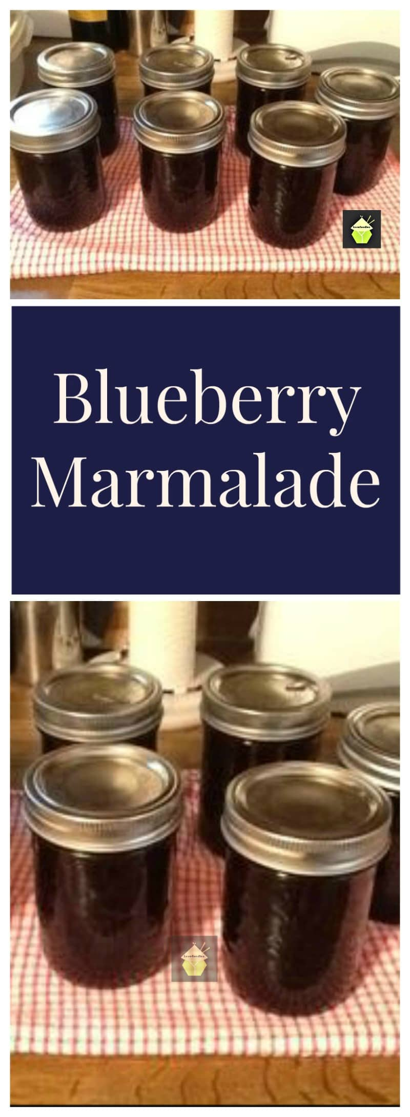 How To Make Blueberry Marmalade. This is a wonderful recipe and an old family favorite!