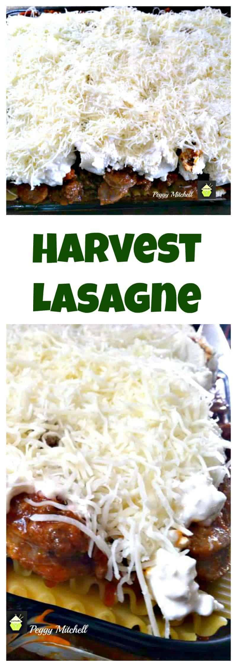 Harvest Lasagne. Always a hit with a crowd and full of goodies!