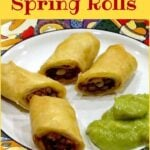 Mexican Spring Rolls - A great side dish or starter and absolutely perfect for parties