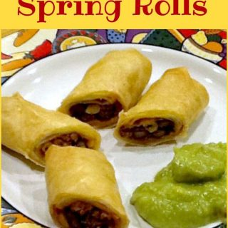 Mexican Spring Rolls