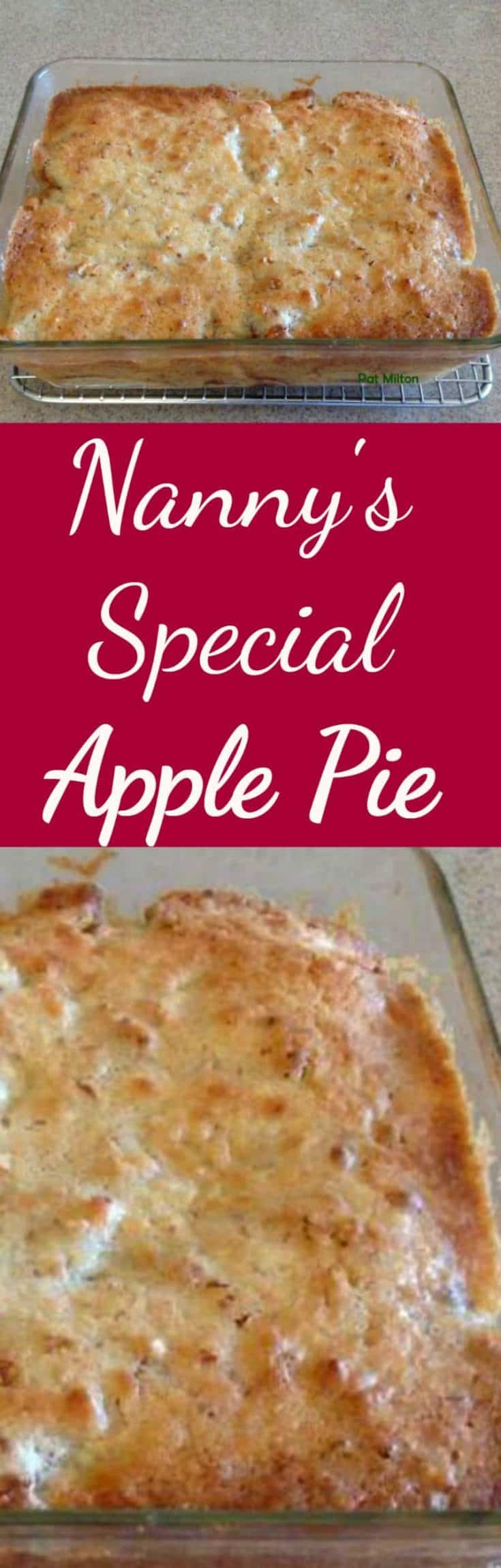 Nanny Pat's Special Apple Pie. This apple pie is an old family recipe and always very popular, especially for those who prefer a crustless pie!