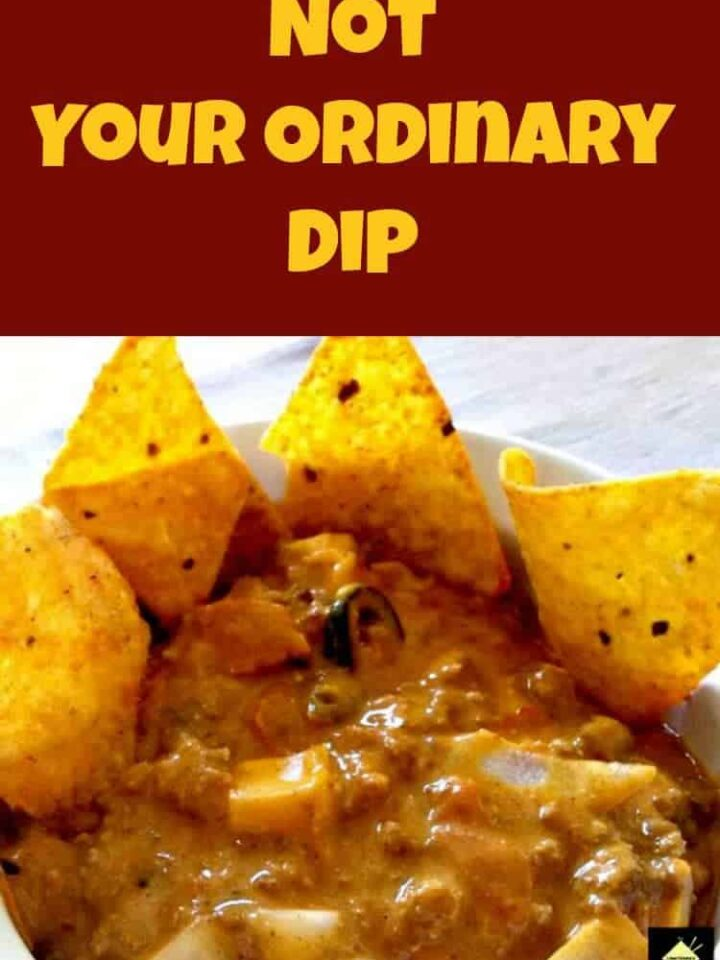 Not Your Ordinary Dip really is delicious and very flexible. You can use as a dip, a sauce for pasta, or even thin it out for a nacho soup. Which ever way, its yummy!