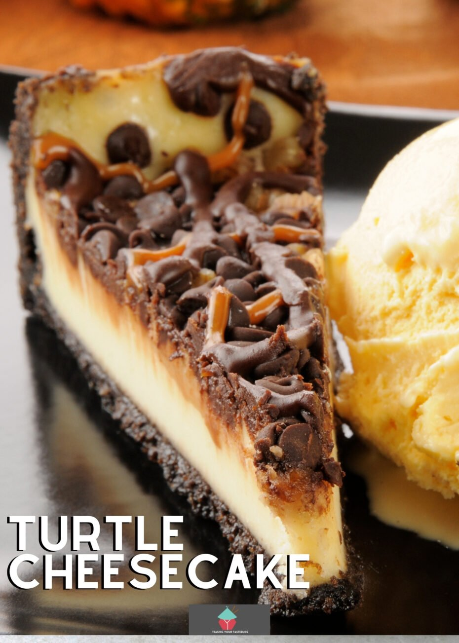 Turtle Cheesecake is a delicious creamy baked cheesecake topped with pecans, caramel, and chocolate. A perfect combination of deliciousness in every bite. Great for parties and celebrations.