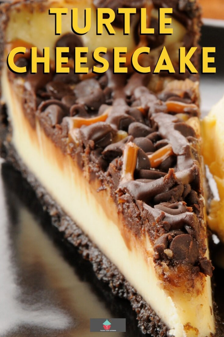 Turtle CheesecakeP1