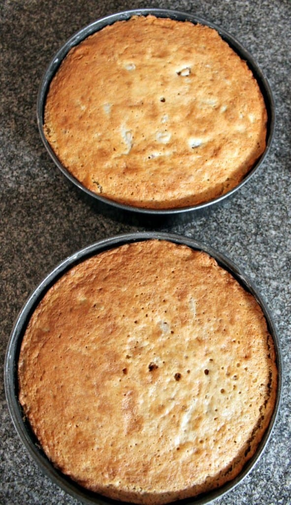 Classic Victoria Sponge Cake. Cooling in pan