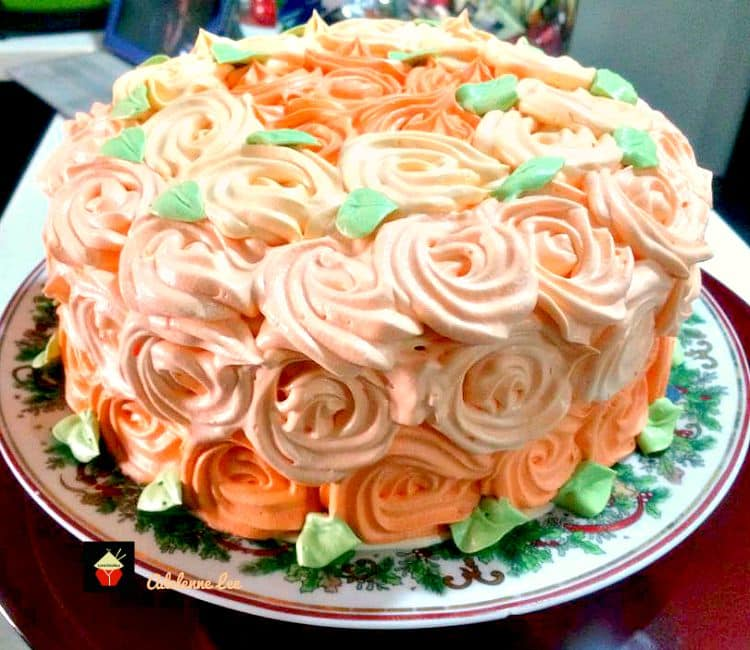 Celebration Carrot Cake, a beautifully moist and soft carrot cake with the surprise addition of coconut and a whipped cream frosting make this cake absolutely delicious!