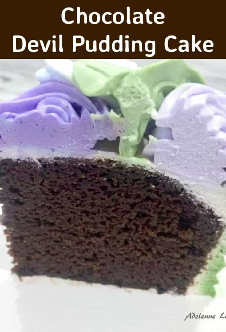 Chocolate Devil Pudding Cake6