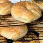 Homemade Fresh Bagels