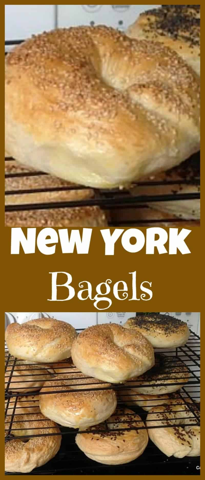 Homemade Fresh Bagels - Great instructions and recipe for how to get your bagels perfect! What toppings would you choose? Sweet or Savory?