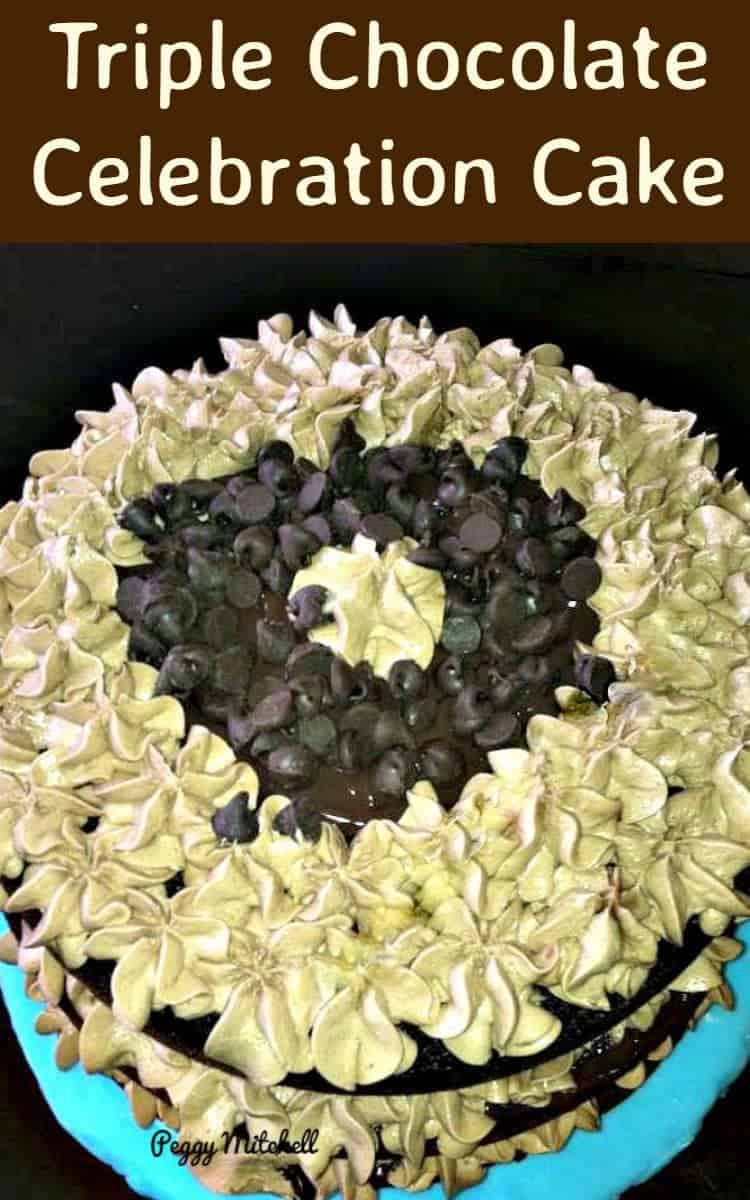 Triple Chocolate Celebration Cake - This is worth having a celebration for just so you can make it! A very rich chocolatey moist cake.