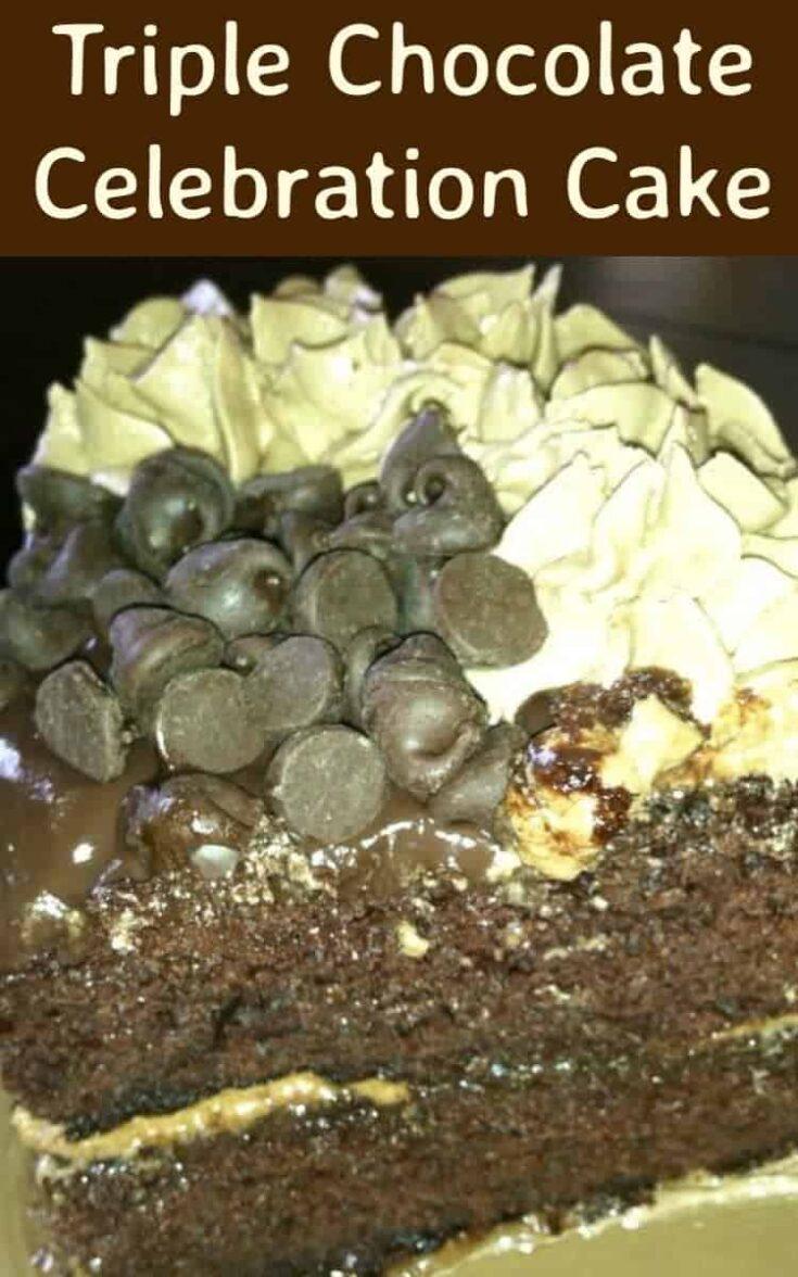 Triple Chocolate Celebration Cake6