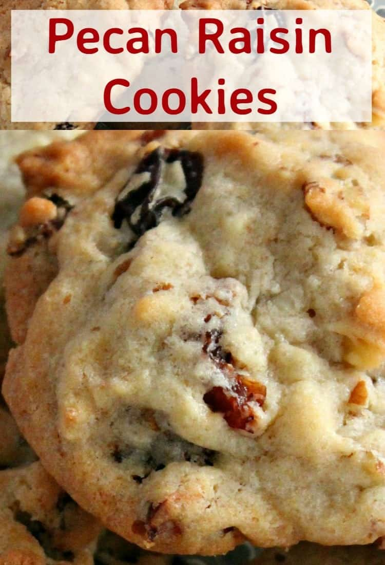 Pecan Raisin Cookies. Delicious easy cookies perfect with a glass of milk or cup of tea! Also great for gifts!   Lovefoodies.com
