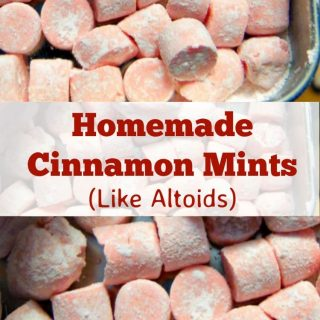 Homemade Cinnamon Mints – Like Altoids