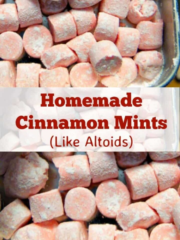 Homemade Cinnamon Mints are just like the famous Altoid mints, and have a curiously strong flavor. Easy and fun to make little candies! | Lovefoodies.com