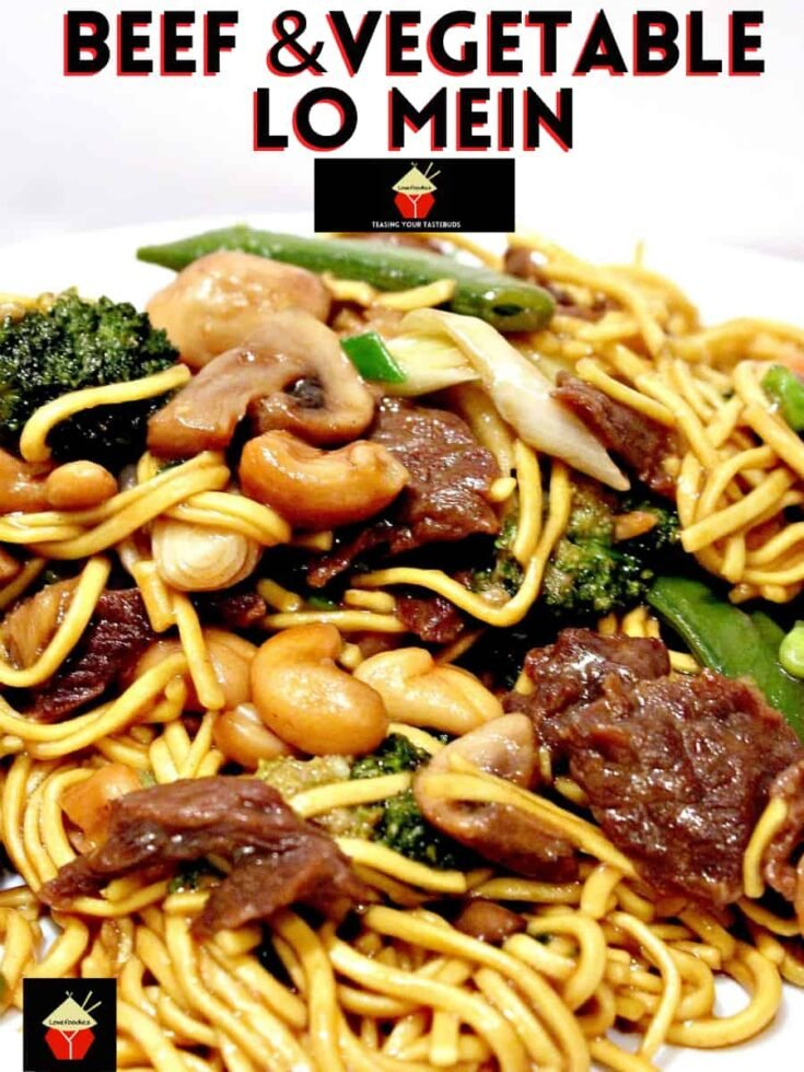 Beef and Vegetable Lo Mein H