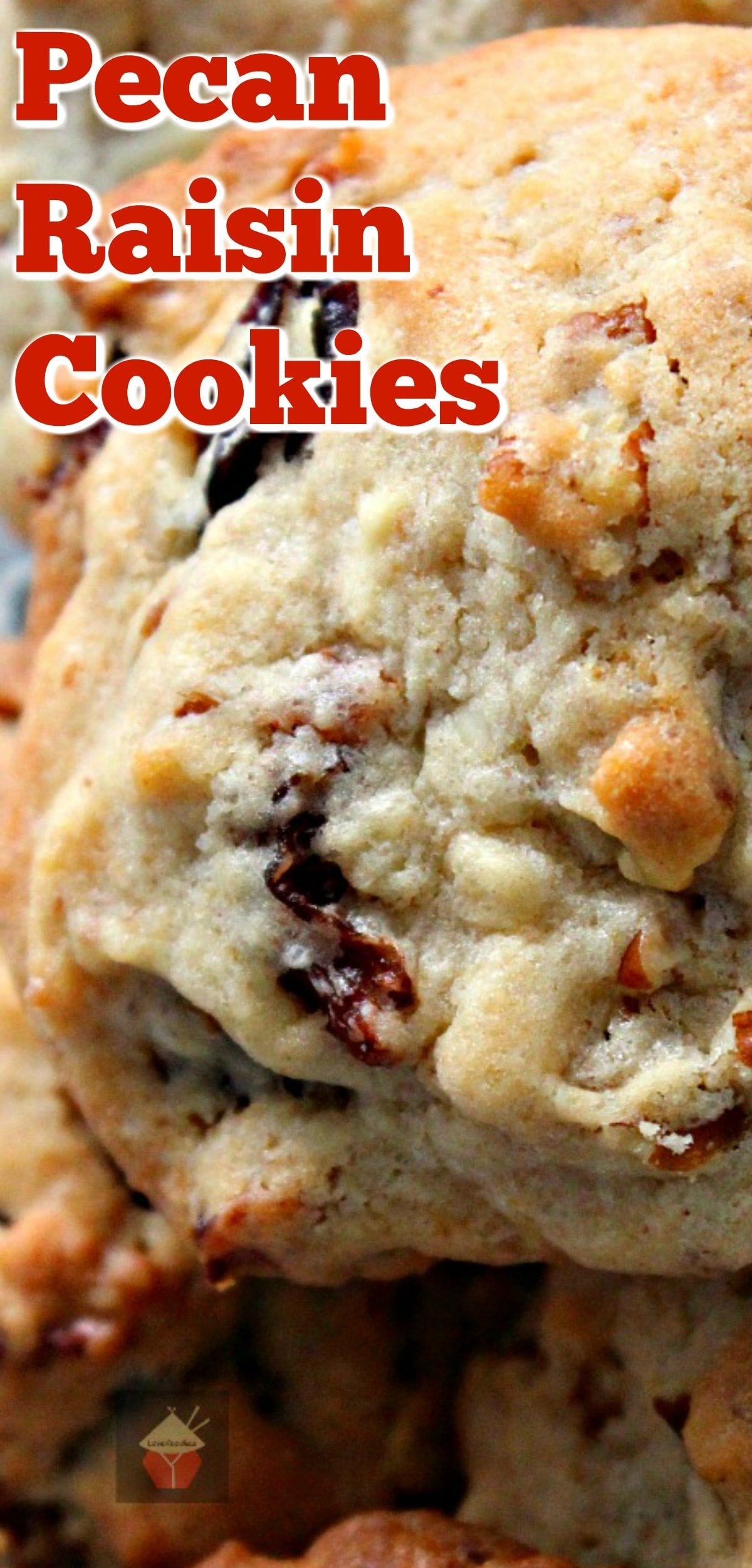 Pecan Raisin Cookies. Delicious easy cookies perfect with a glass of milk or cup of tea! Also great for gifts! Very flexible recipe so you can swap the raisins and pecans for other fruits and nuts! Yummy!