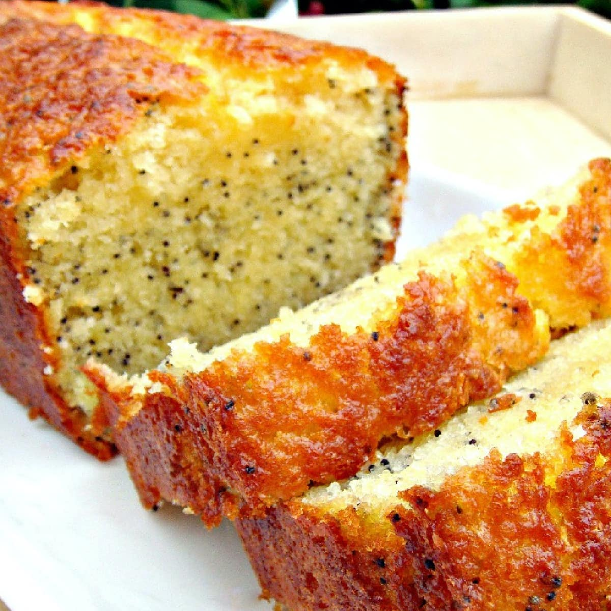Lemon and Poppy Seed LoafF