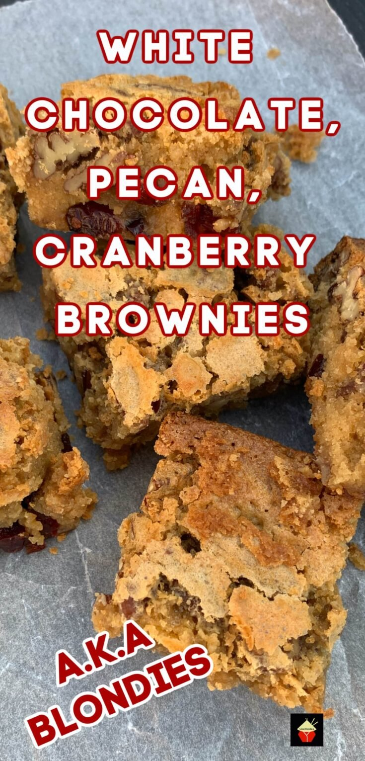 White Chocolate and Pecan Cranberry BrowniesP3