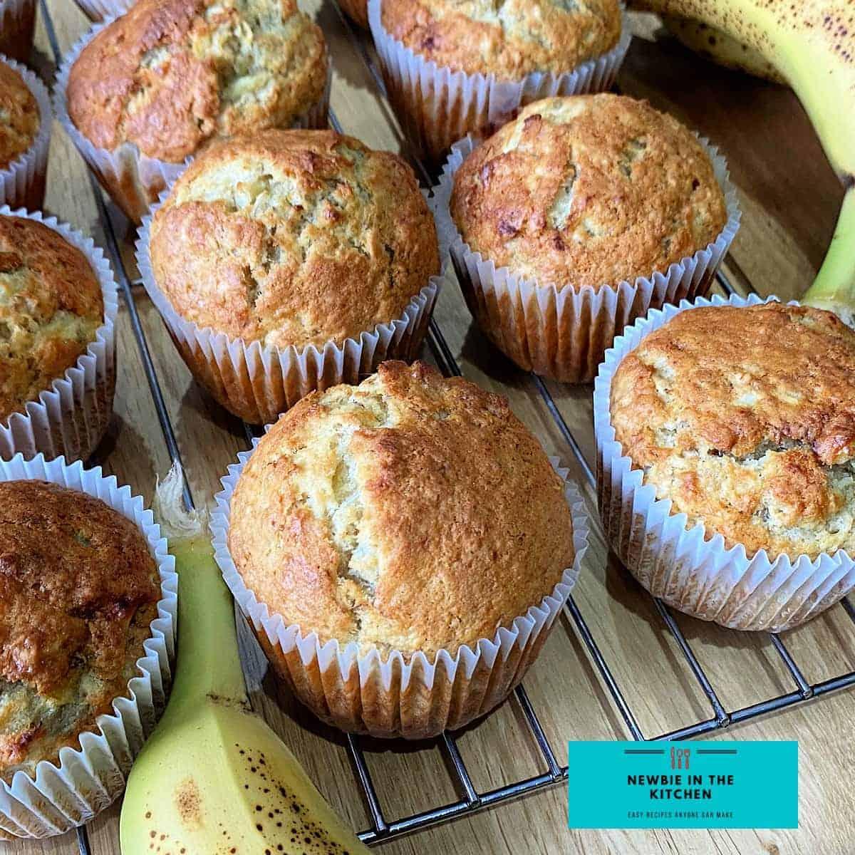Banana Oatmeal MuffinsF